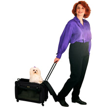 Tutto Small Pet On Wheels - Lexington Luggage