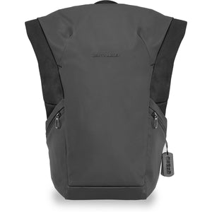 Briggs & Riley Delve Large Roll-top Backpack - Lexington Luggage
