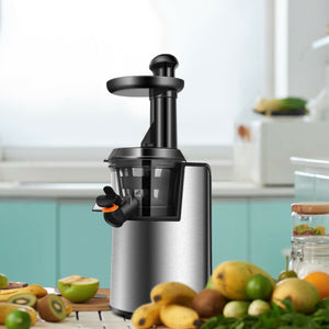Slow Masticating Cold Press Juicer Extractor
