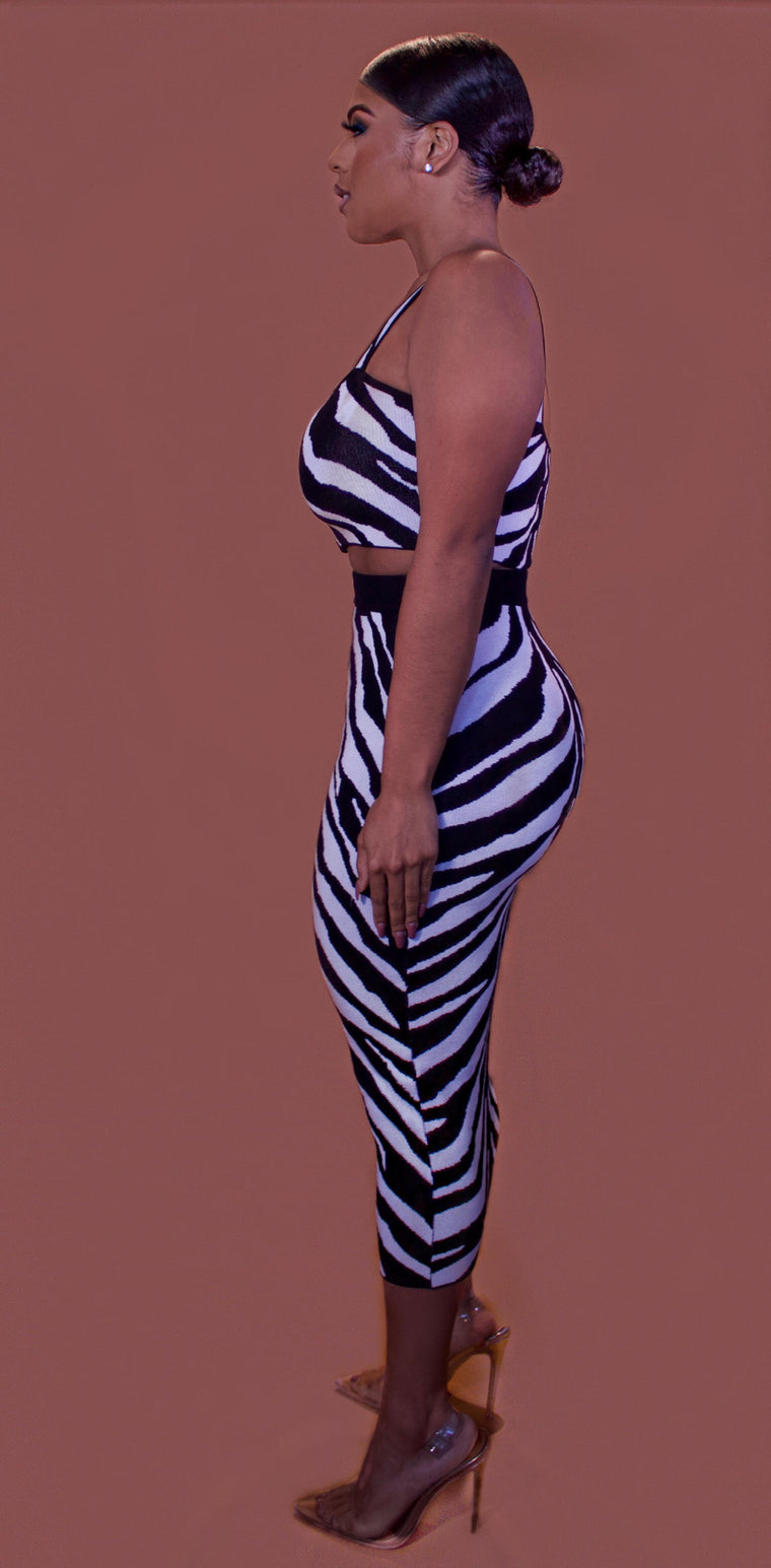 Riley Two-Piece Zebra Set
