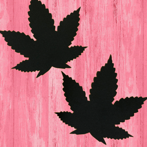 Weed Leaf Pasties - Black