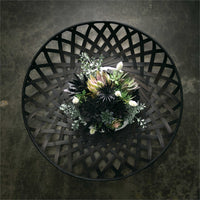 Echeveria Pick { Black }