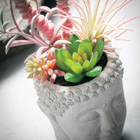Buddha Planter with Succulents