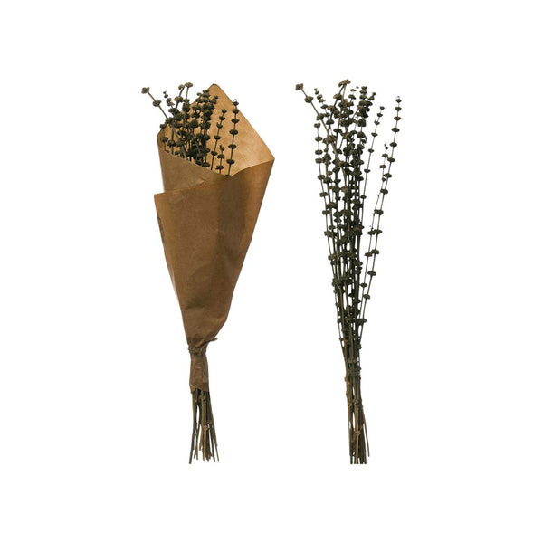 Dried Natural Leonurus Bunch | 24""