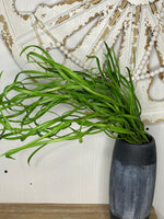Trailing Seagrass | 31.5""