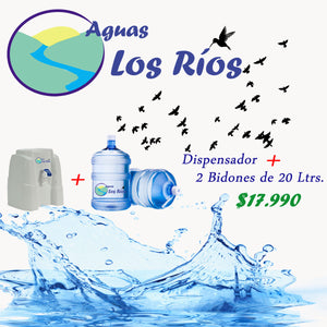 Dispensador de color + 2 bidones de 20 litros