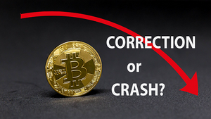 Should I Invest in Bitcoin: Is this a crash or a correction?