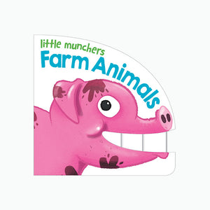 Little Munchers Books Asst