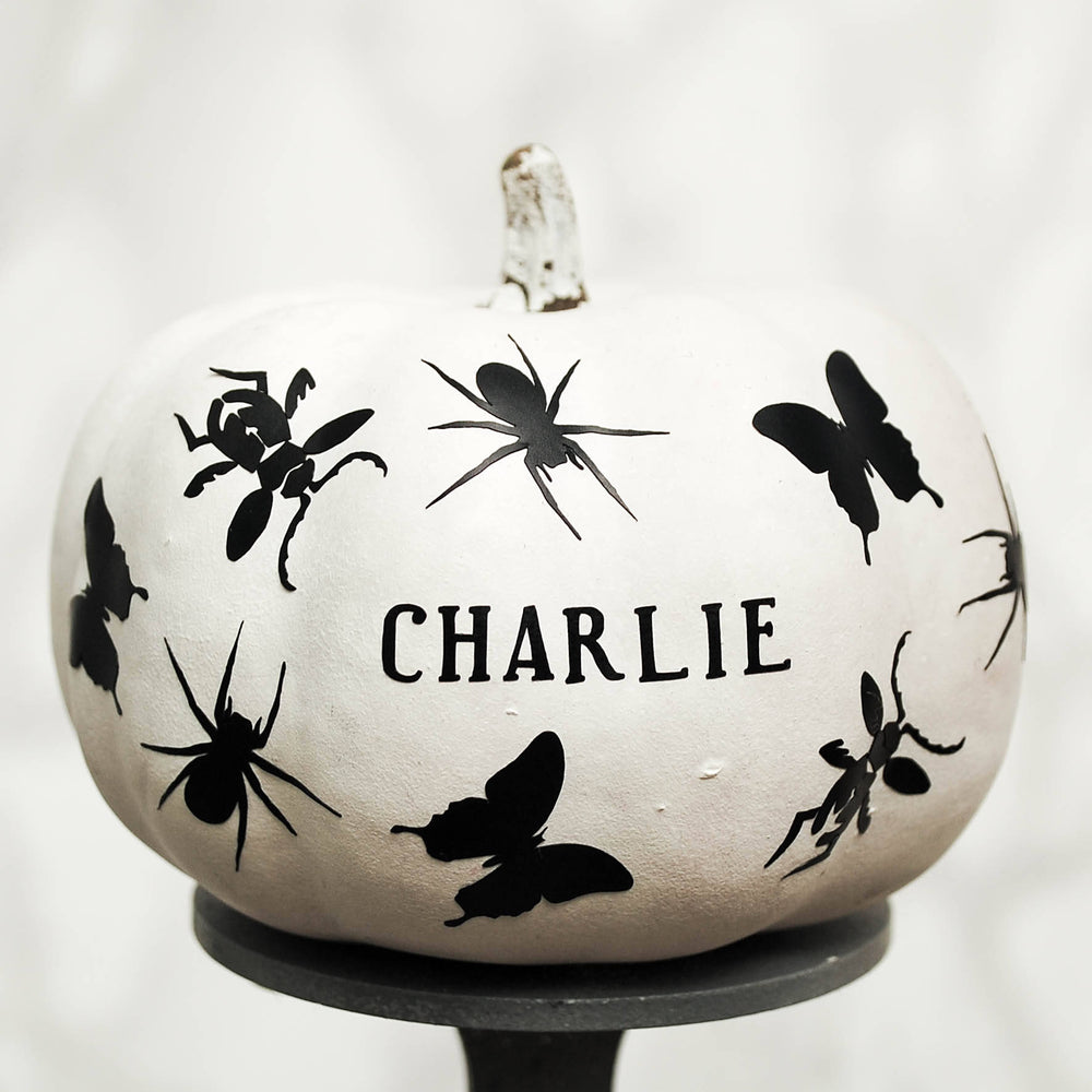 Insect Personalised Halloween Pumpkin Sticker