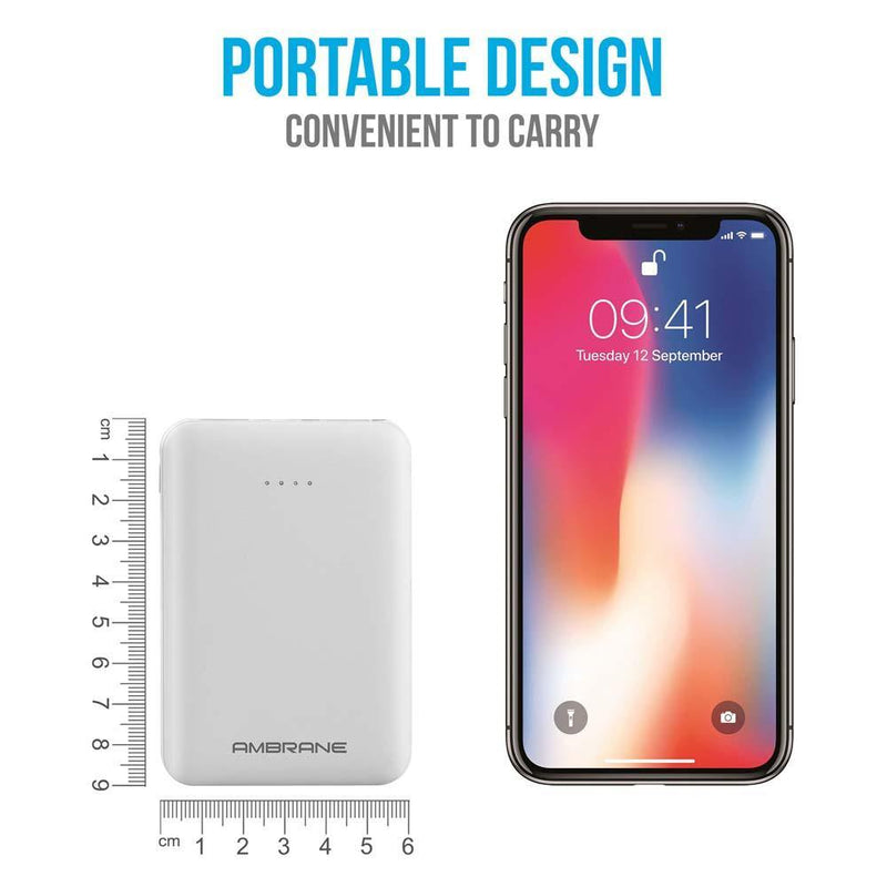 PP-501 5000 mAh Compact Size Power Bank