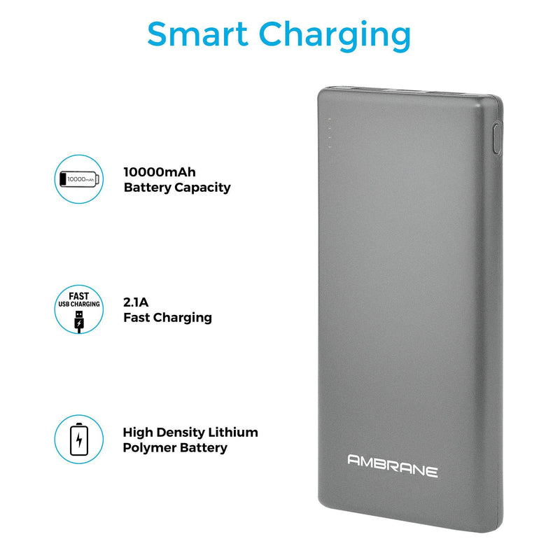 PP-125 10,000 mAh Lithium Polymer Power Bank (Silver), Power Bank Price in India - AmbraneIndia
