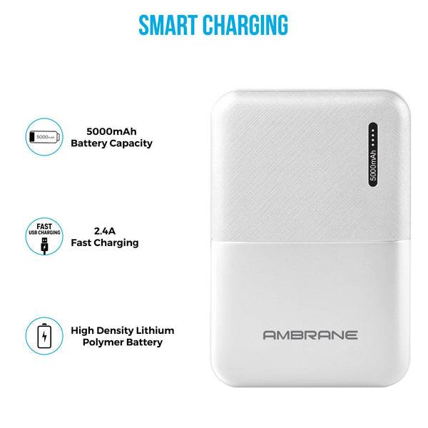 Budget Power Bank Price
