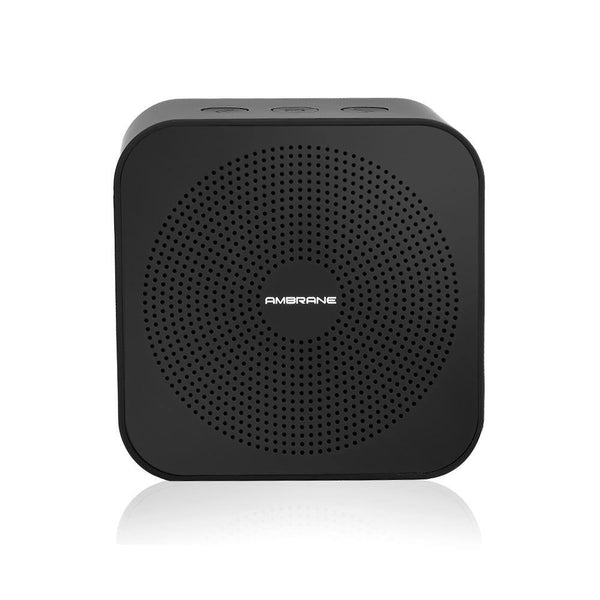 BT-2100 3 Watts Portable Bluetooth Speaker (Black)