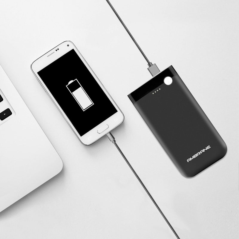 PP-150 15000 mAh Power Bank (Black) | Best Power Bank to Buy - AmbraneIndia