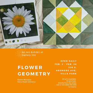 Flower Geometry - A Closer Look at Nature's Patterns