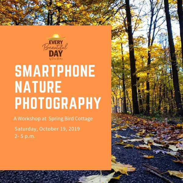 Smartphone Nature Photography Workshop at Spring Bird Cottage