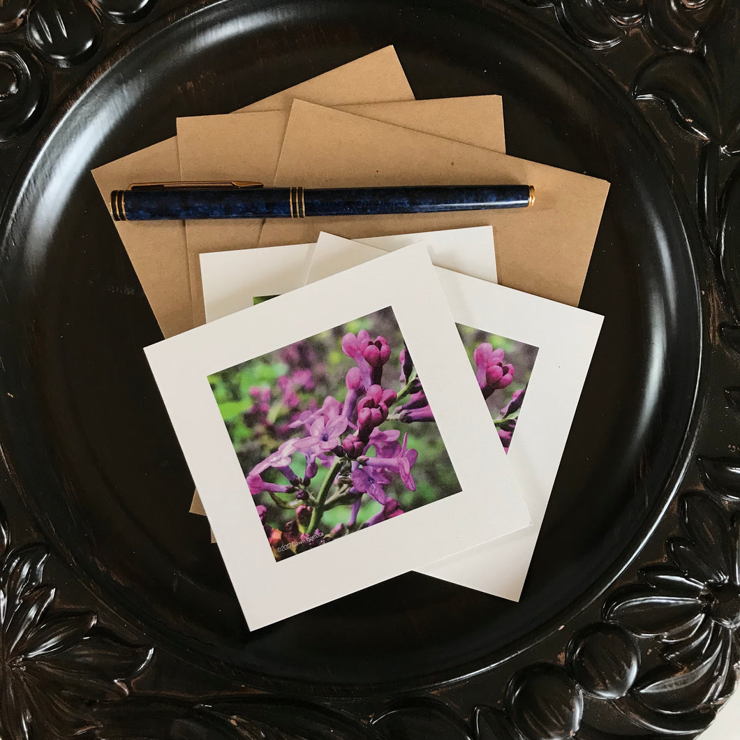 Set of Three Notecards - Lilac Time