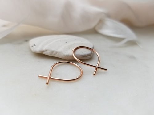 Fail Jewelry 14K Rose Gold Filled Small Fish Earrings