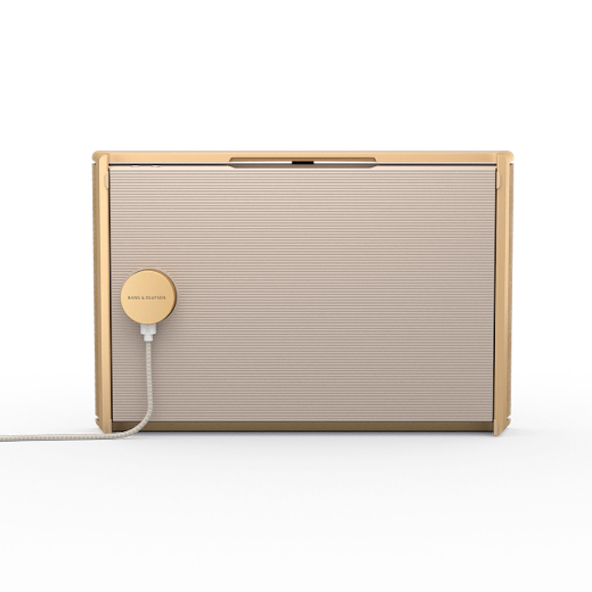 Bang & Olufsen Beosound Level - Portable WiFi Speaker - AVStore