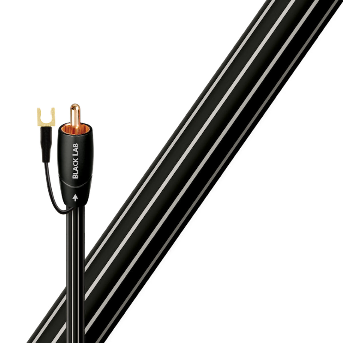 Audioquest Black Lab - Subwoofer Cable - AVStore.in