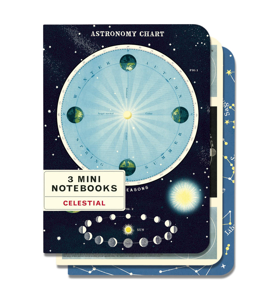 Cavallini - Set of 3 Mini Notebooks - Celestial - Lined, Blank & Graph Interiors
