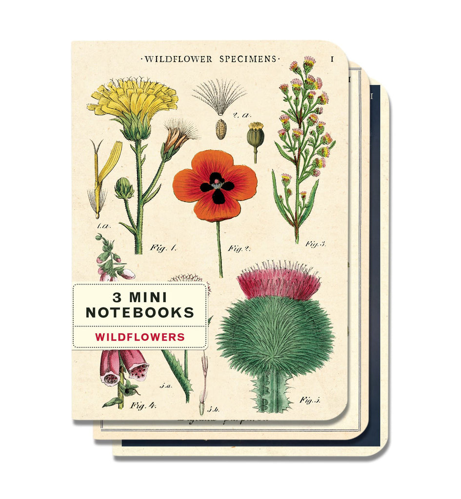 Cavallini - Set of 3 Mini Notebooks - Wildflowers