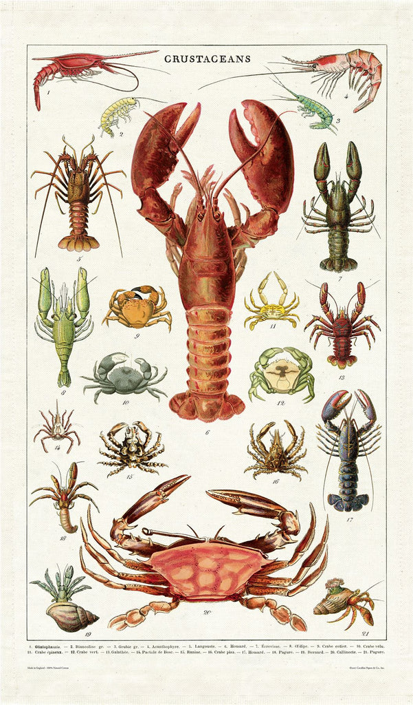 Cavallini - 100% Natural Cotton Vintage Tea Towel - 80 x 47cms - Crustaceans
