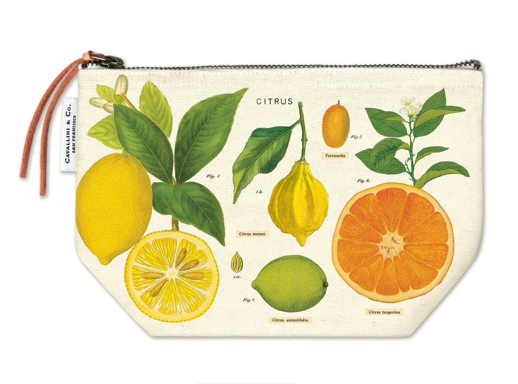 Cavallini - 100% Natural Cotton Vintage Pouch Bag - 15x22cms - Citrus Fruits