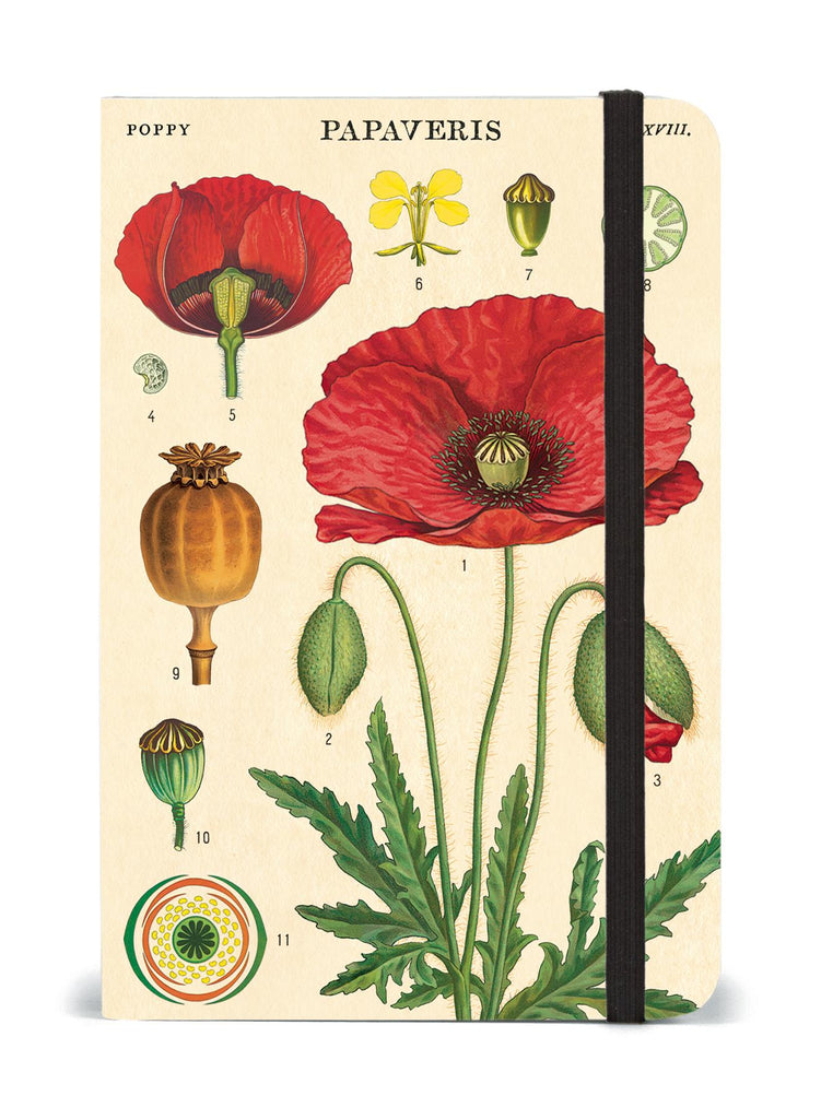 Cavallini - Small Lined Pocket Notebook 4x6ins - Botany/Poppies- 256 Pages With Elastic Enclosure