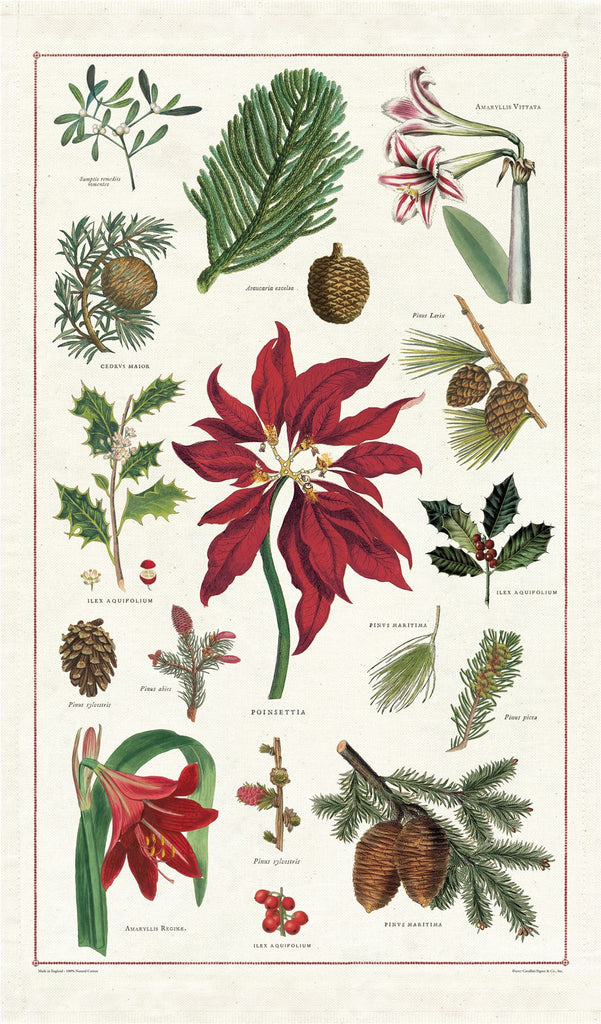 Cavallini - 100% Natural Cotton Vintage Tea Towel - 80 x 47cms - Christmas Botanicals