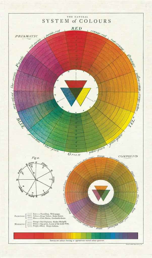 Cavallini - 100% Natural Cotton Vintage Tea Towel - 80 x 47cms - Colour Wheel/System of Colours