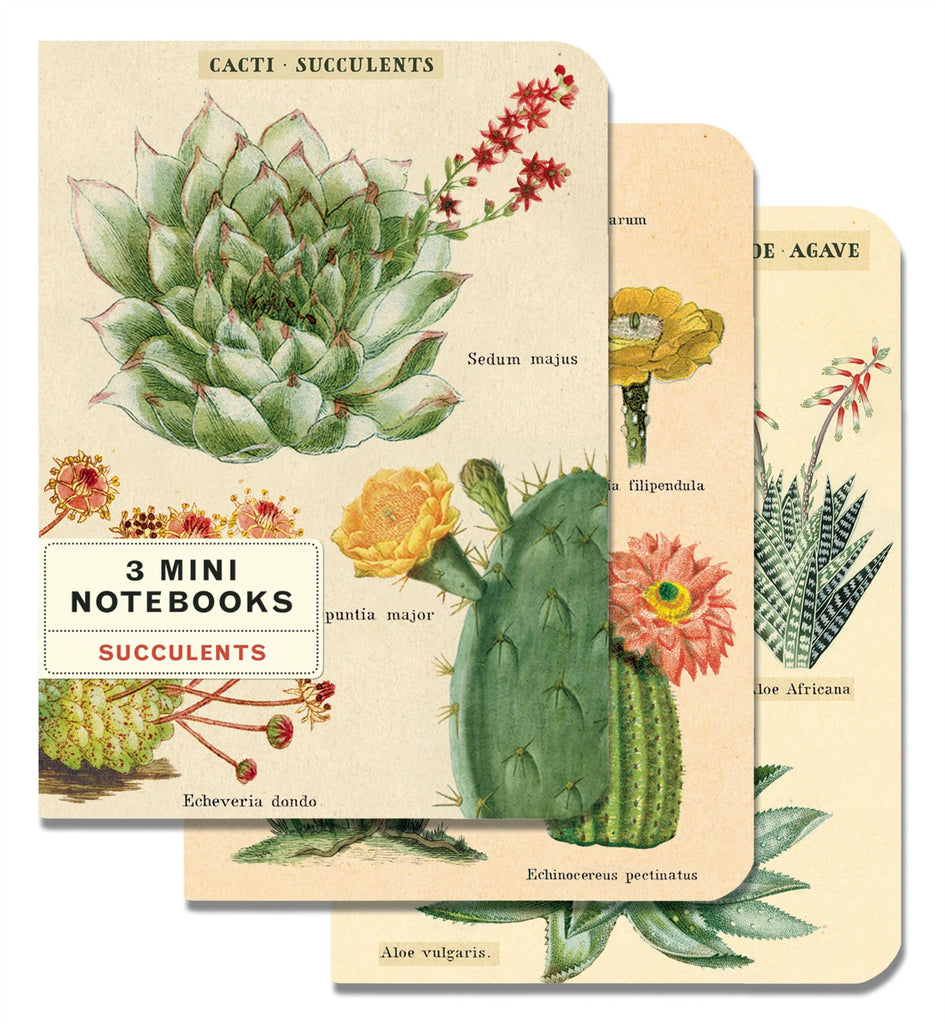 Cavallini - Set of 3 Mini Notebooks - Succulents/Cacti - Lined, Blank & Graph Interiors