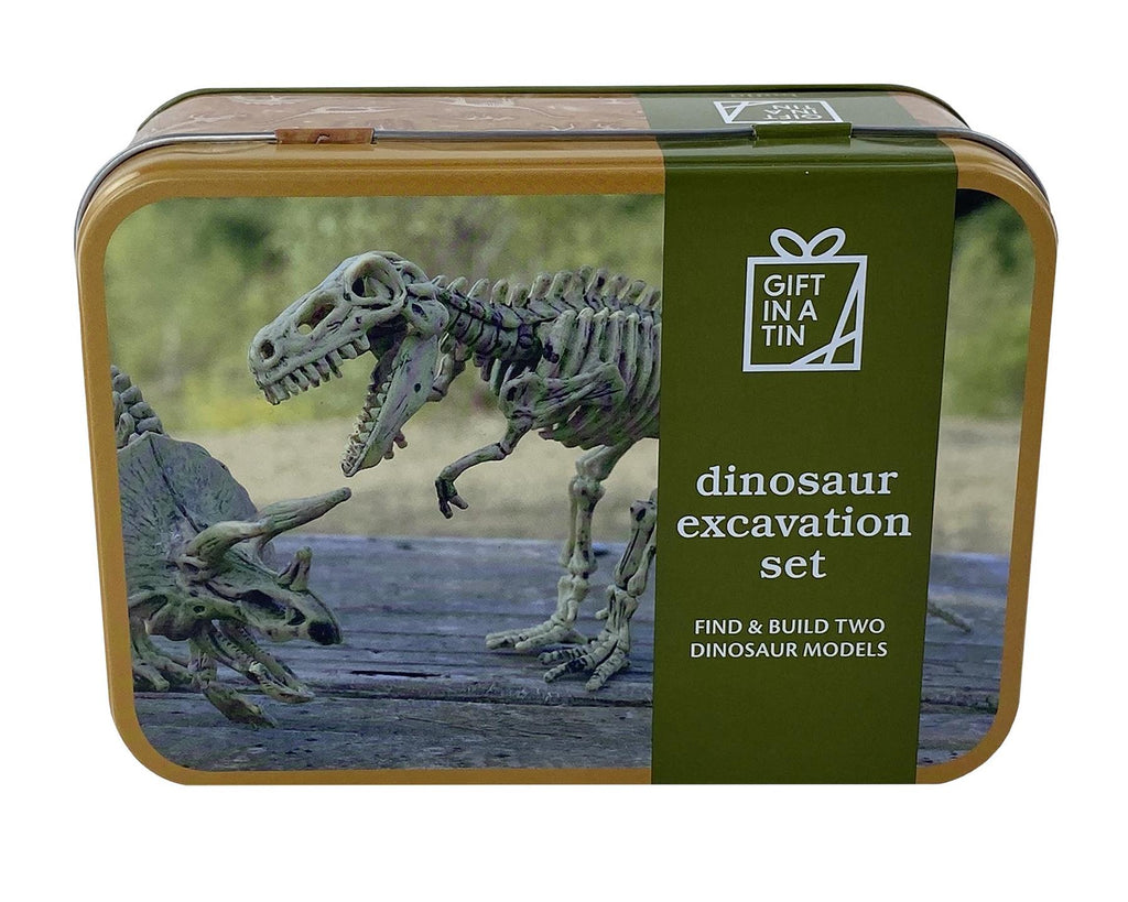 Apples To Pears - Build - Gift In A Tin - Dinosaur Excavation Set