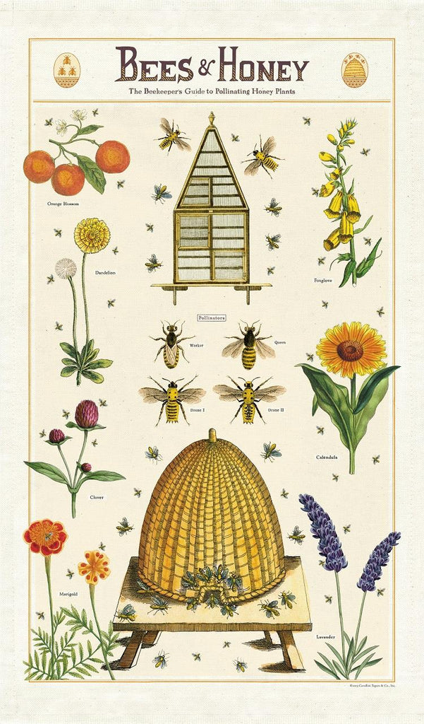 Cavallini - 100% Natural Cotton Vintage Tea Towel - 80 x 47cms - Bees & Honey