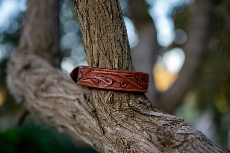 tan leather dog collar on a tree