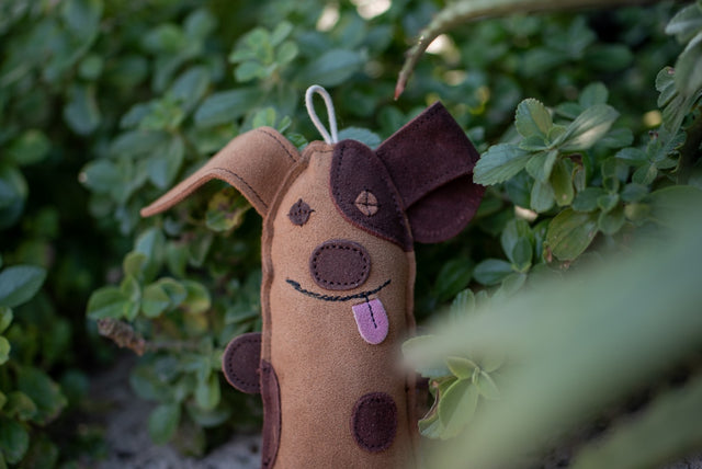ST-EDT/006 Dog Shaped Eco Dog Toy
