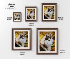 Siberian Husky - Diamond Painting Kit