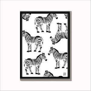 Zebra - Wildlife