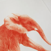 Laden Sie das Bild in den Galerie-Viewer, ELEPHANT PRINT ORANGE