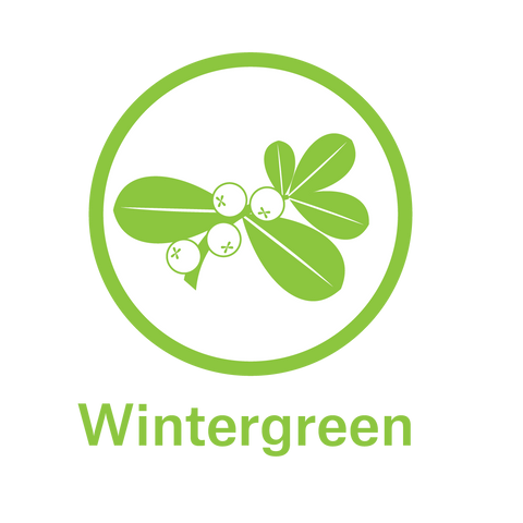 Essential Oil - Wintergreen
