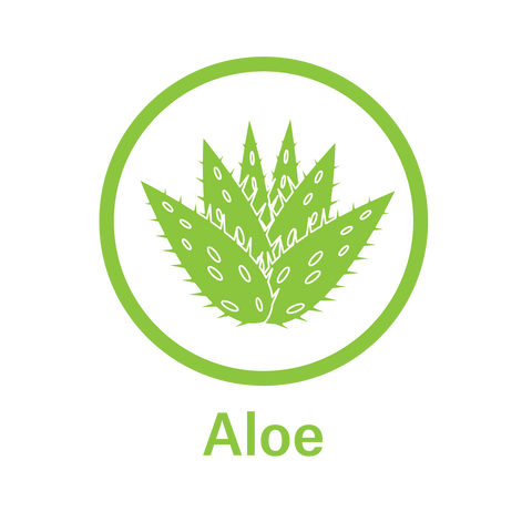 Essential Oil Aloe - Soothes Gums and Heals Oral Tissue