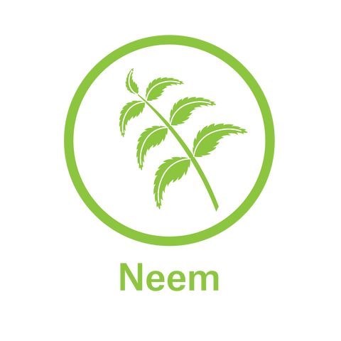 Essential Oil Neem - Anti-Bacterial and Antri- Viral Properties. Helps Remove Plaque.