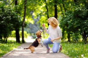 Physical & Mental Health Benefits of Having a Pet