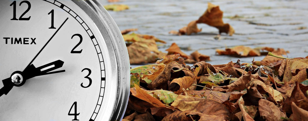 11 Tips for Navigating Daylight Saving Time