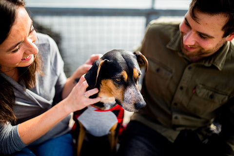 couple with newly adopted dog
