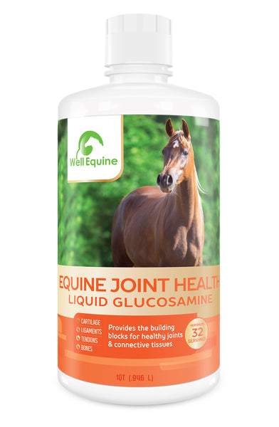 Equine Joint Health - Liquid Glucosamine