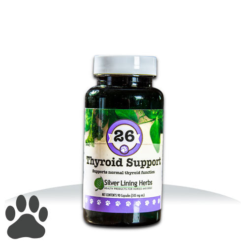 #26 Thyroid Support
