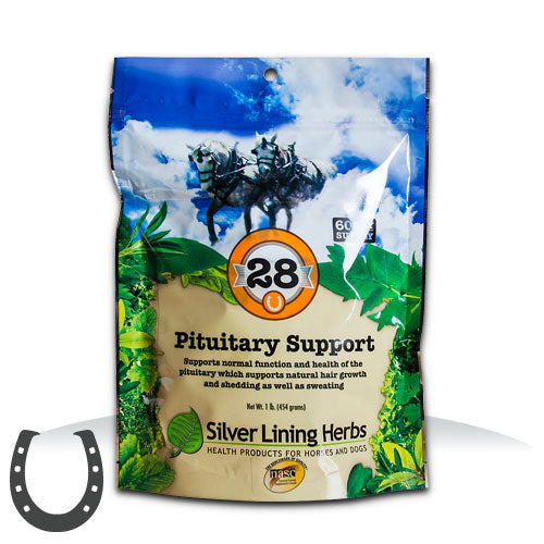 #28 Pituitary Support