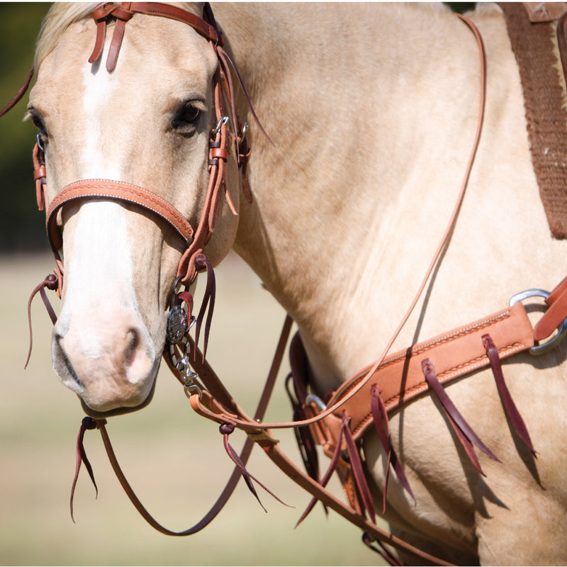 5/8'' Browband Headstall