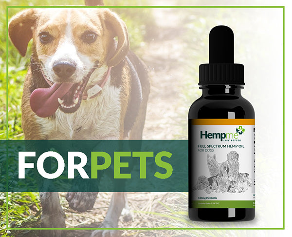Full Spectrum Oil For Dogs